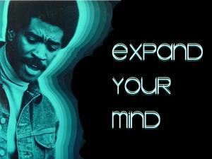 Black consciousness movement essay